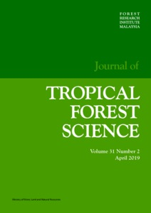 Collapse and physical properties of native and pre-steamed